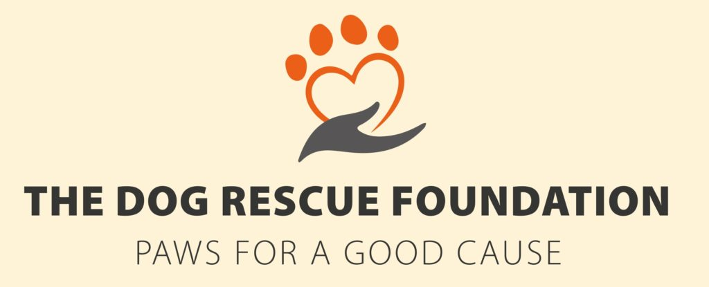 Dog Rescue Foundation